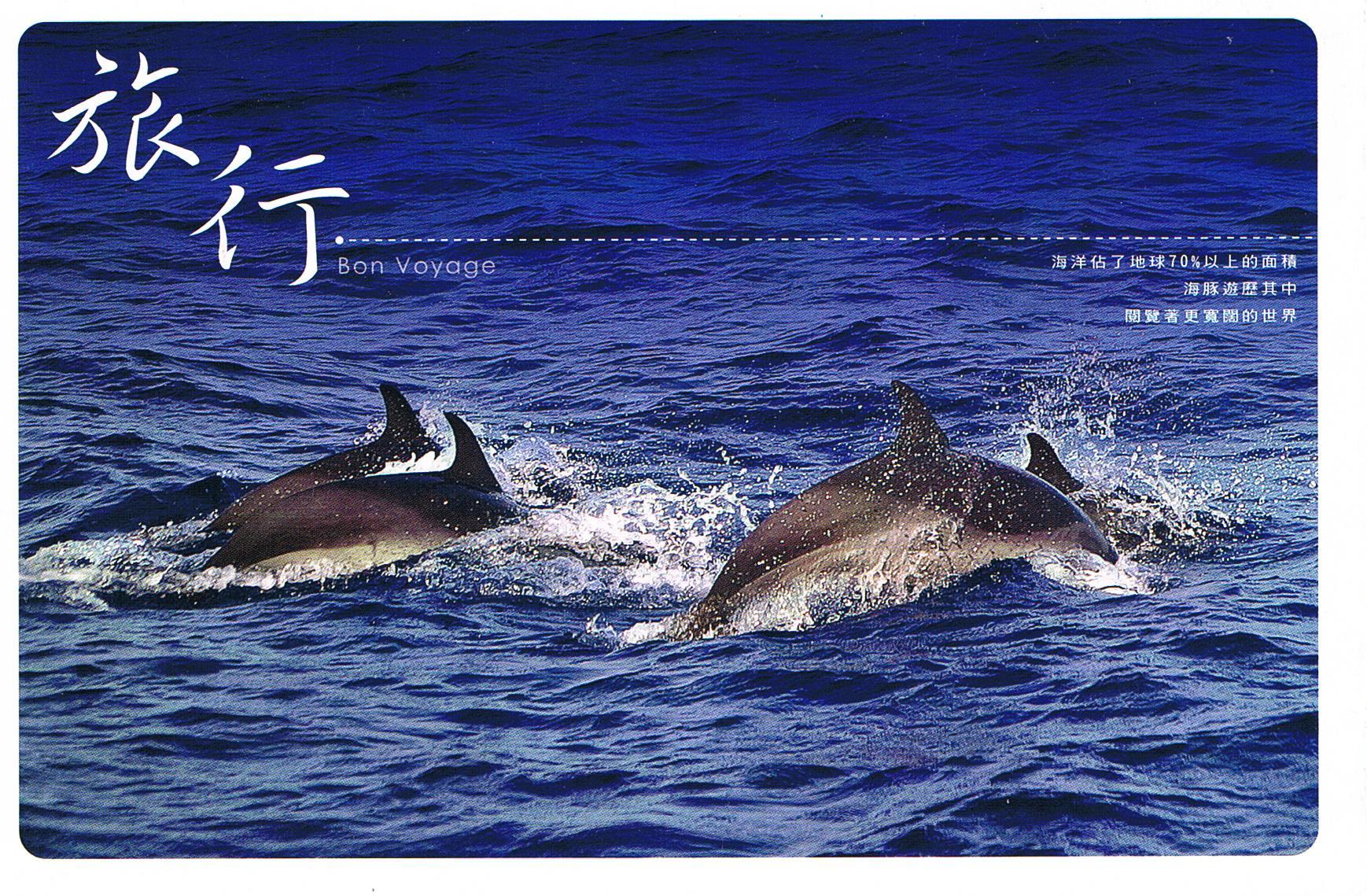 Delfine aus Japan