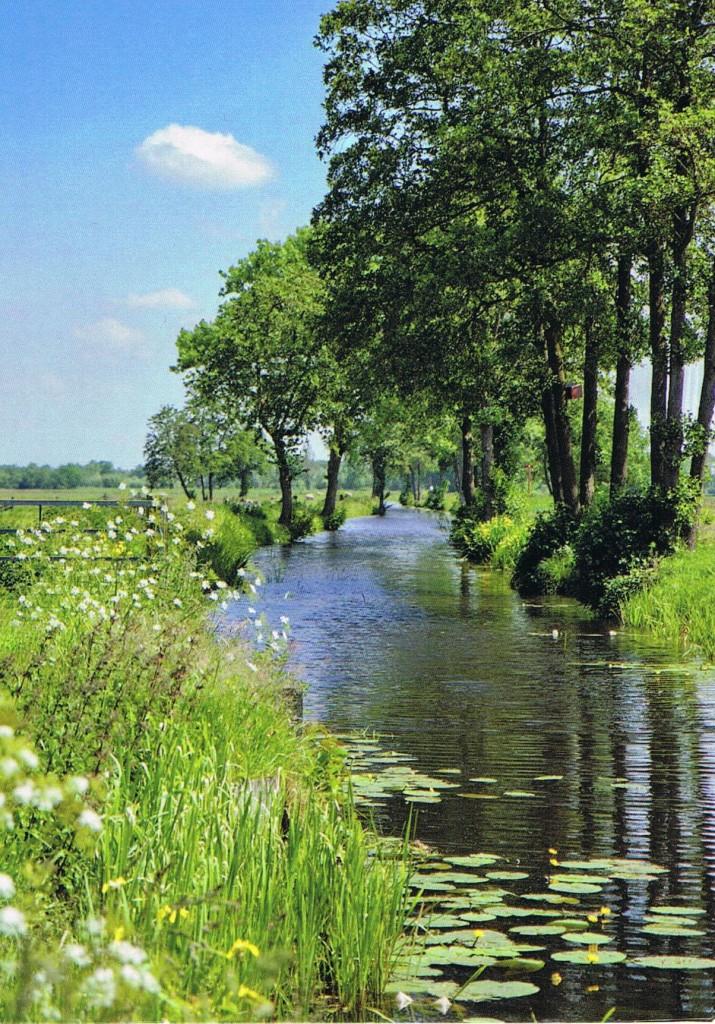 Landgut Nienoord in Leek (Niederlande)