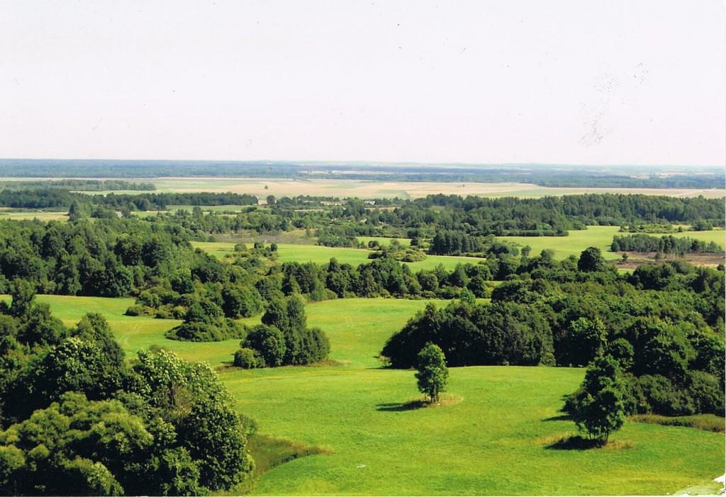 Landschaft in Litauen