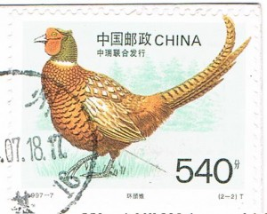 Ein Fasan auf einer Briefmarke aus China