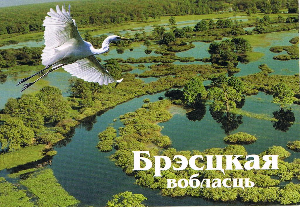 Weißrussische Landschaft