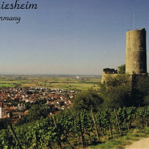 Straphenburg in Schriesheim