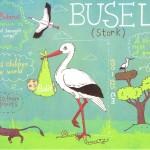 Der Storch/Busel und seine Bedeutung in Weißrussland