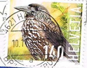 Briefmarke mit Tannenhäher