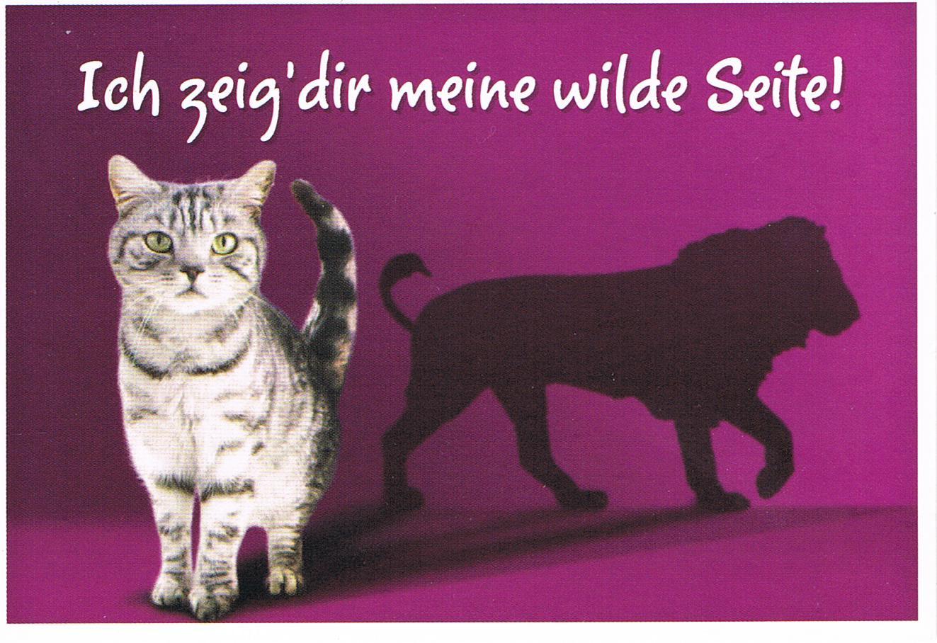 Whiskas-Postkarte aus Deutschland