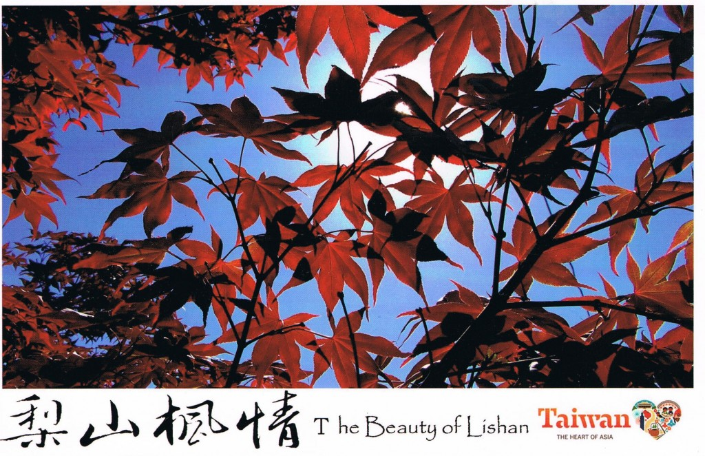 The Beauty of Lishan - Taiwan